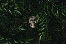 Creative Halloween Layout Made Of Flowers And Leaves With Skull. Flat Lay. Spooky Nature Concept.