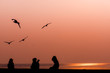 canvas print picture - birds on sunset