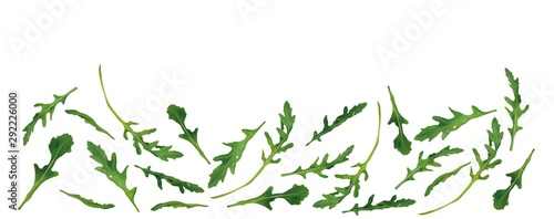 Beautiful fresh rucola isolated on white background Wallpaper Mural