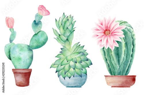 Valokuvatapetti Cactuses in pots hand drawn watercolor raster illustration set