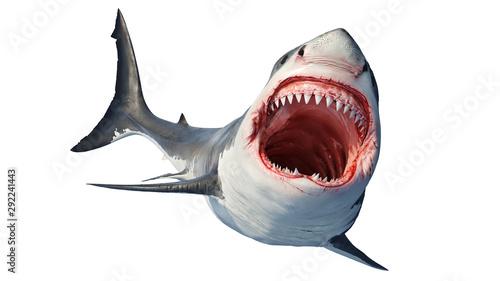 Fotografía White shark marine predator big open mouth and teeth