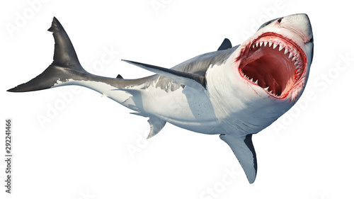 Fotografie, Tablou White shark marine predator big open mouth
