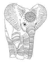 Hand Drawn Baby Elephant. Sket...