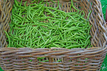 Basket Of French Green Beans At A Farmers Market