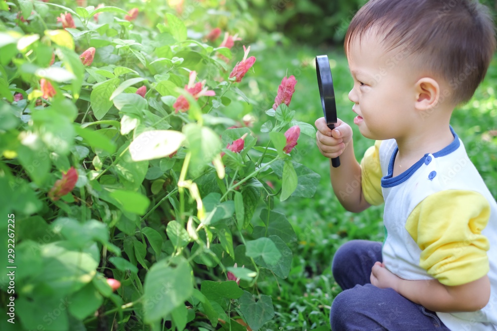 Fototapety, obrazy: Cute curious little Asian 2 - 3 years old toddler boy kid exploring environment by looking through a magnifying glass in sunny day at beautiful garden, Kid first experience & discovery concept