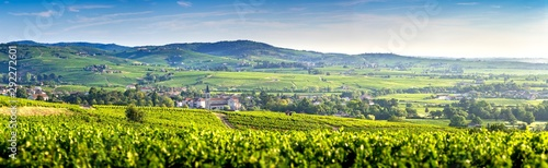 Foto op Aluminium Wijngaard Panoramic landscape of vineyards and villages of Fleurie and Villié Morgon, Beaujolais, France