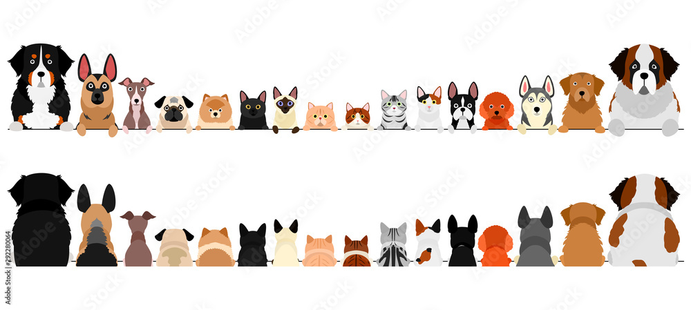 Fototapety, obrazy: small and large dogs and cats border set, upper body, front and back