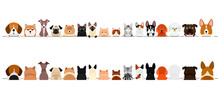Small  Dogs And Cats Border Se...
