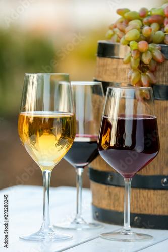 Glasses of tasty wine and barrel in vineyard