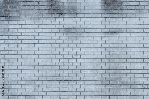 Fototapeta  汚れたタイル壁