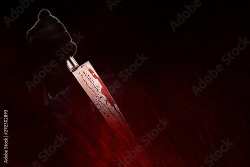 Cuadros en Lienzo Killer with a bloody knife