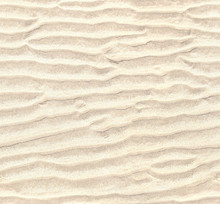 Seamless Pattern Of White Sand...