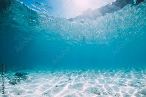 Fototapeta Blue ocean with white sand bottom underwater in Hawaii obraz