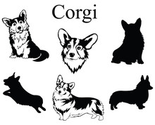 Set Of Corgi. Collection Of Pedigree Dogs. Black And White Illustration Of A Dog Corgi. Vector Drawing Of A Pet. Tattoo.