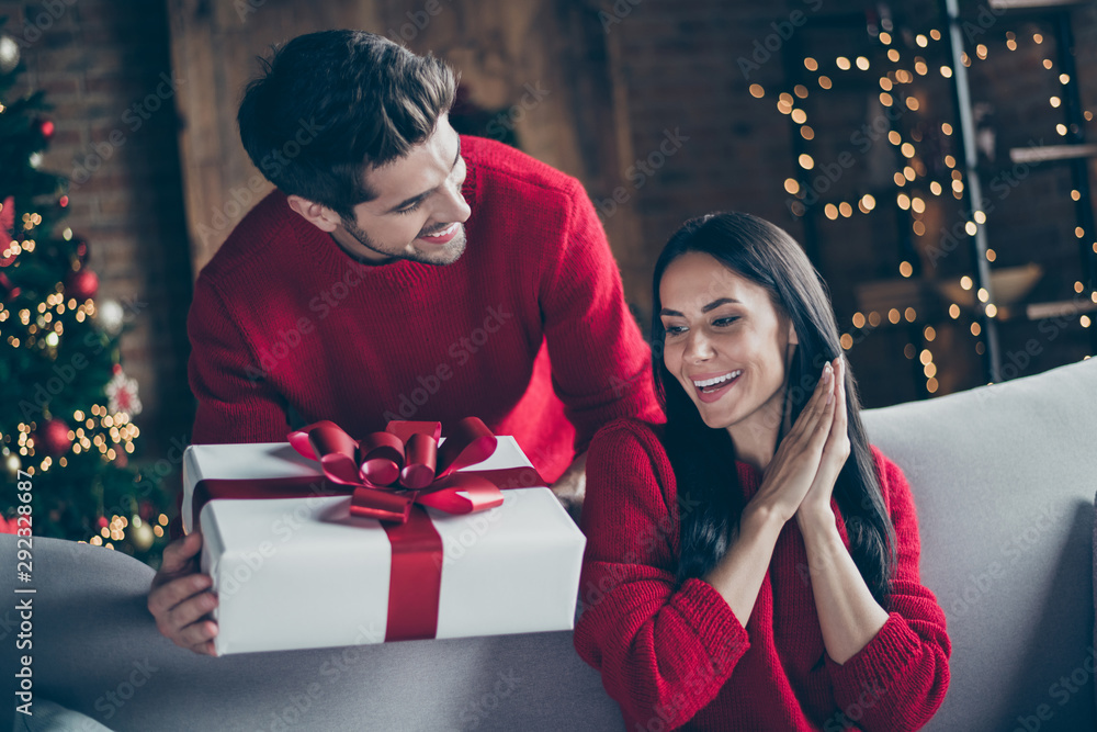 Fototapeta Portrait of two brunet haired romantic couple give new year christmas x-mas present to his lady sit on divan couch in decorative house indoors