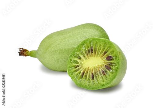 ripe vitamin fruit berry delicious actinidia (kiwi) Canvas Print