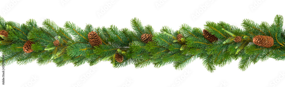 Fototapeta Garland with green fir branches and cones isolated on white