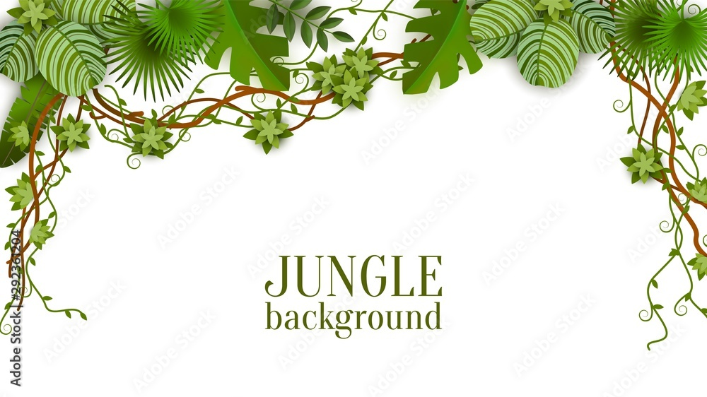 Fototapeta Tropical jungle lianas vine and palm leaves banner vector illustration isolated.