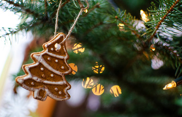 Christmas card with copy space. Decorative gingerbread hanging on the green christmas tree with fairy lights with bokeh.