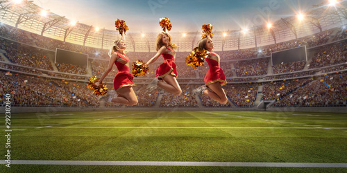 Fotomural Group of cheerleaders in action on the professional stadium
