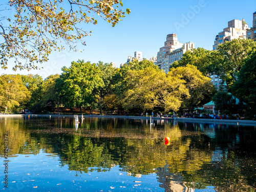 view of buildings surrounding Central Park in New York City in the fall