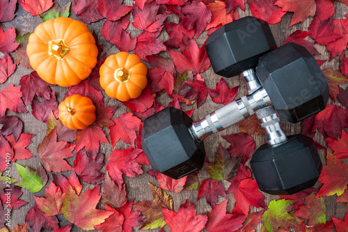 Pair of crossed dumbbells on a rustic wood background covered in fall color of r Fototapeta