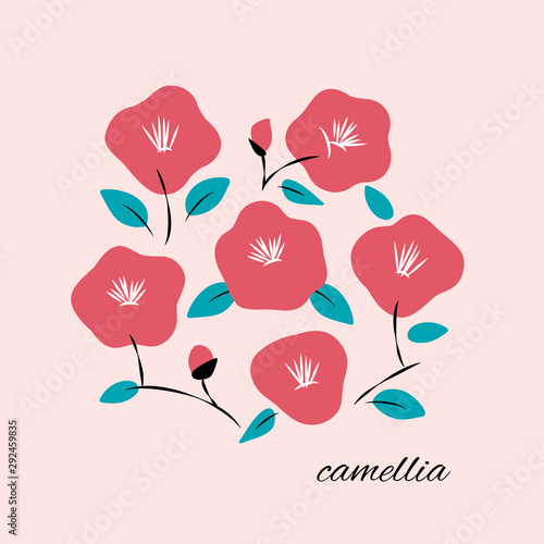 Cuadros en Lienzo Vector illustration of hand drawn camellia flowers