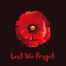Vector Illustration Eps10, Isolated Background. Realistic Red Poppy Flower Symbol, 3d Remembrance Day November 11 Poster With Lest We Forget Text. Flat Anniversary Memory Banner.