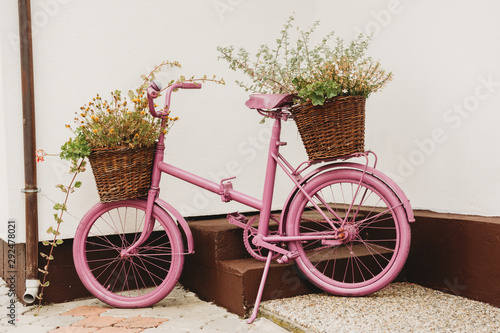 Fotobehang Fiets upcycled recycled pink old vintage shabby bycicle used as a flower pot
