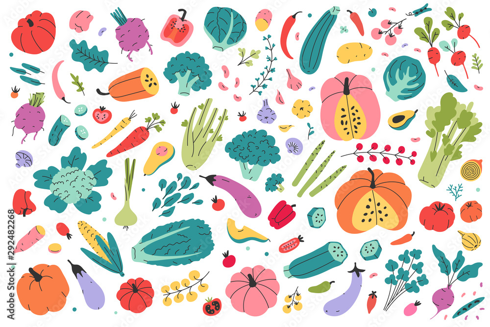 Fototapety, obrazy: Collection of colored hand drawn fresh vegetables isolated on white background. Big bundle of tasty vegetarian products, wholesome healthy food. Flat cartoon doodle vector illustration, farming market