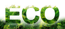 Eco Word On The Background Of ...
