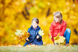 Children playing with leaves at autumn park - 292494874