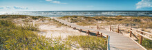 Wooden Path To The Baltic Sea, The Beauty Of Northern Nature