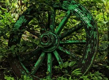 Wheel In The National Park