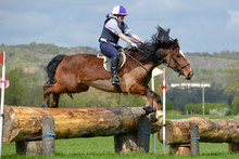 Up And Over, Young Woman And Her Horse Jumping Over A Large Log Jump In The English Countryside. A