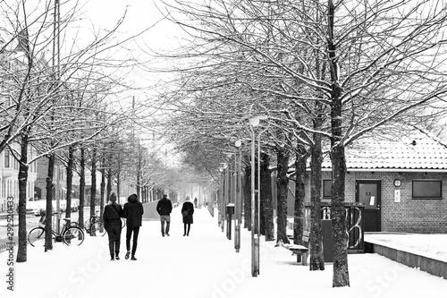 Frozen paths Canvas Print