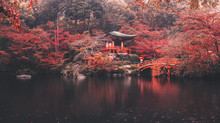 Daigo-ji Temple In Autumn Seas...
