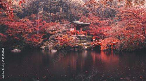 Photographie  Daigo-ji temple in autumn season at japan