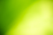 Leinwanddruck Bild - Abstract lights of green nature using as background or wallpaper concept.