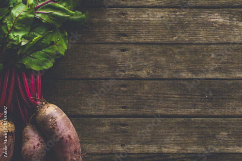 fresh raw beet root vegetables with soil on wooden surface. natural organic food background - 292535887