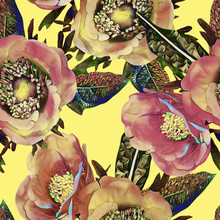 Anemone Flower Seamless Pattern.