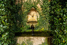 Lion Head Water Feature In Old...