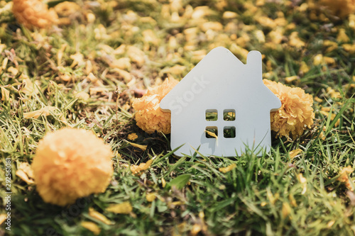 House model on green grass with flower , a symbol for construction , ecology, loan, mortgage, property or home Canvas Print