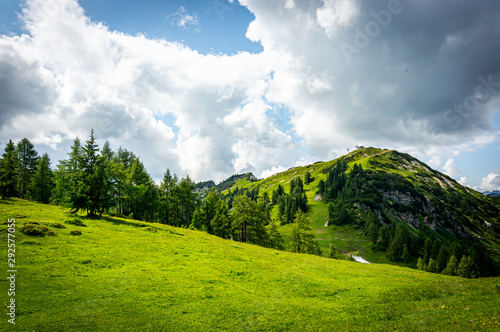 Mountain green landscape