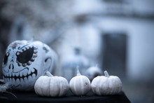 Pumpkins On Background Of Pain...