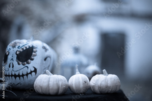 Fotomural  Pumpkins on background of painted pumpkin for day of dead and Halloween