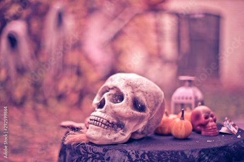 Big skull on a background of pumpkins Wallpaper Mural