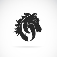 Vector Silhouette Of The Horse...