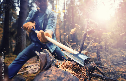 Fotografie, Obraz  Male worker with an ax chopping a tree in the forest.