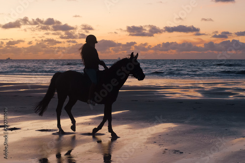 Cadres-photo bureau Fleur horse on the beach